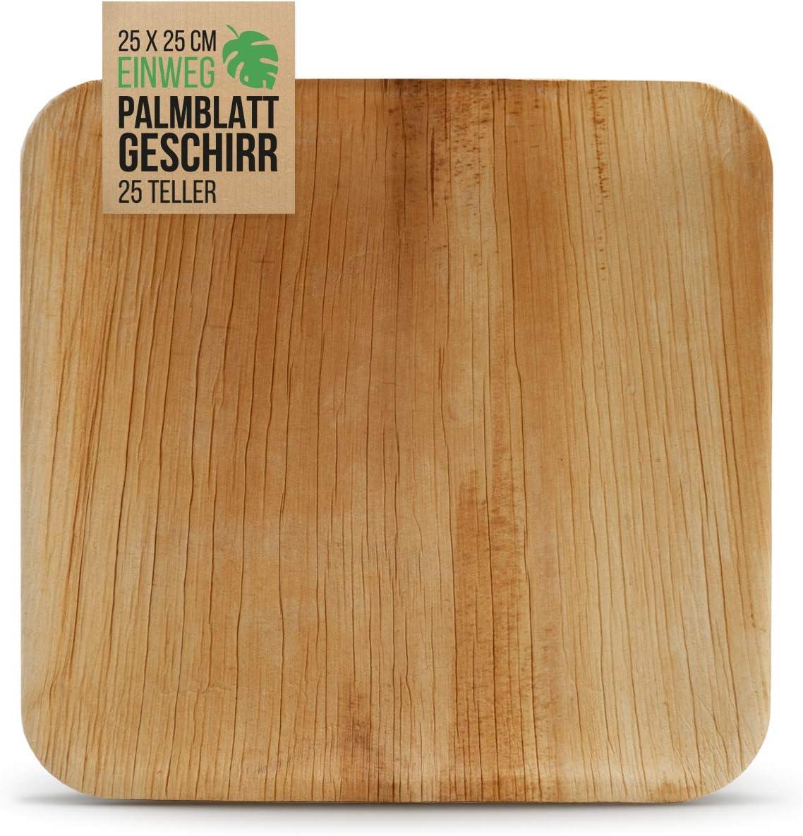 int!rend 25 Platos Desechables de Hoja de Palma | 25 x 25 cm ...