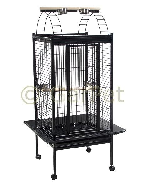 Loro voliere jaula con pájaro Papagayo voliere Papagayo libre de ...