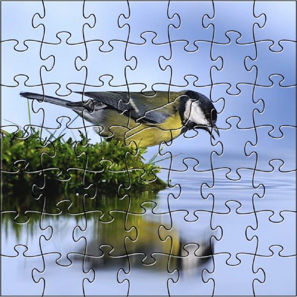 登場! 禅アート&デザインArtisanal木製ジグソーパズル、Thirst、スモール B07F6YPKMB B07F6YPKMB, アキシマシ:d6499090 --- 4x4.lt