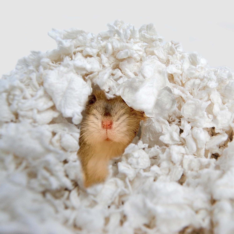 Amazon carefresh Custom Hamster Gerbil Pet Bedding 14 L
