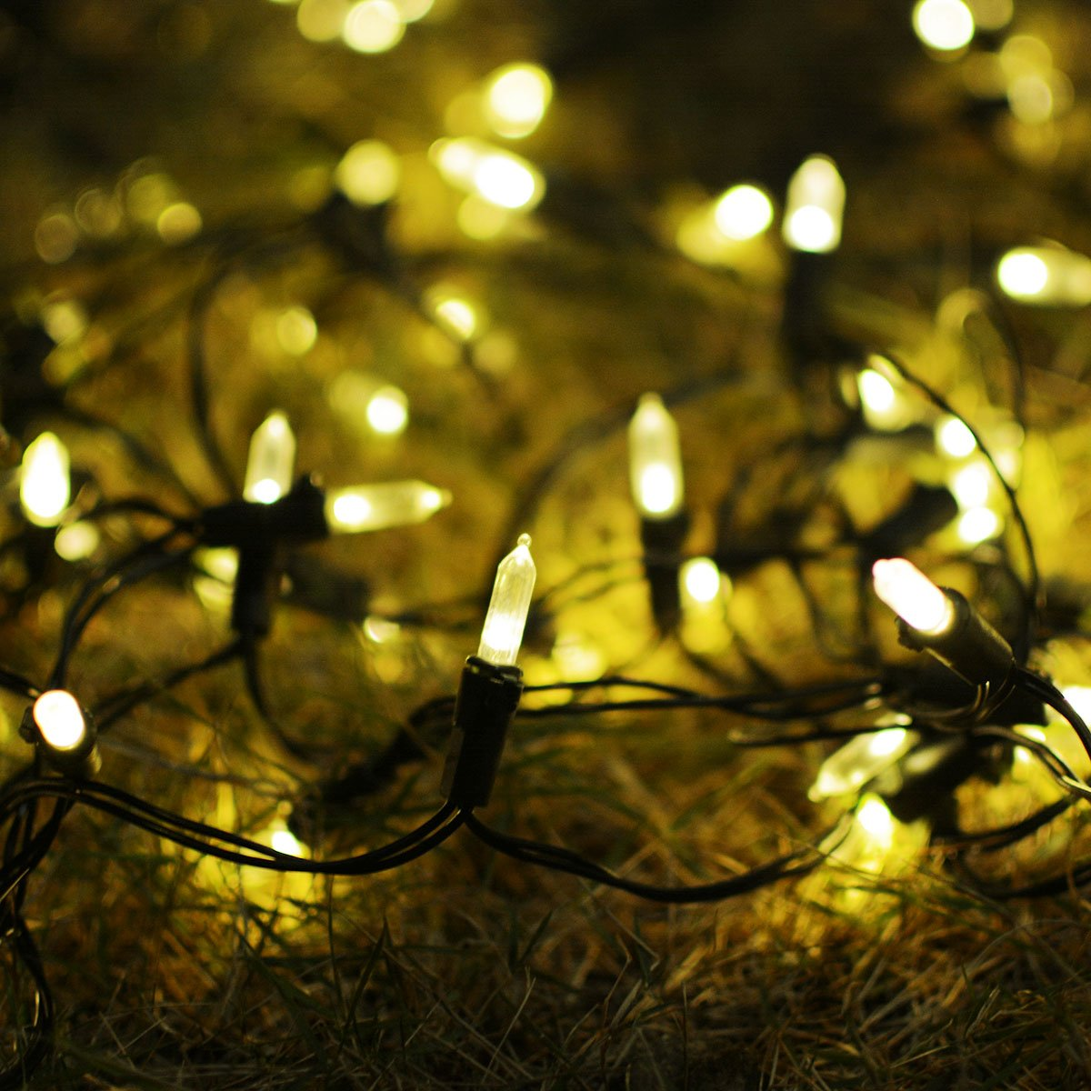 Amazon.com : Lalapao M5 Battery Operated String Lights 100 LED ...