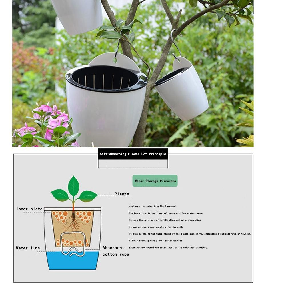 Amazon.com: Self Watering Plant Flower Pot Wall Hanging Round Resin Plastic Planter Basket Garden Supply Home Garden Without Hooks: Home Improvement