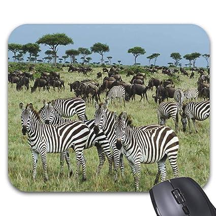 dfd5f2291c892 Amazon.com : Zebra Wild Animals Mouse Pad Stylish Office Computer ...