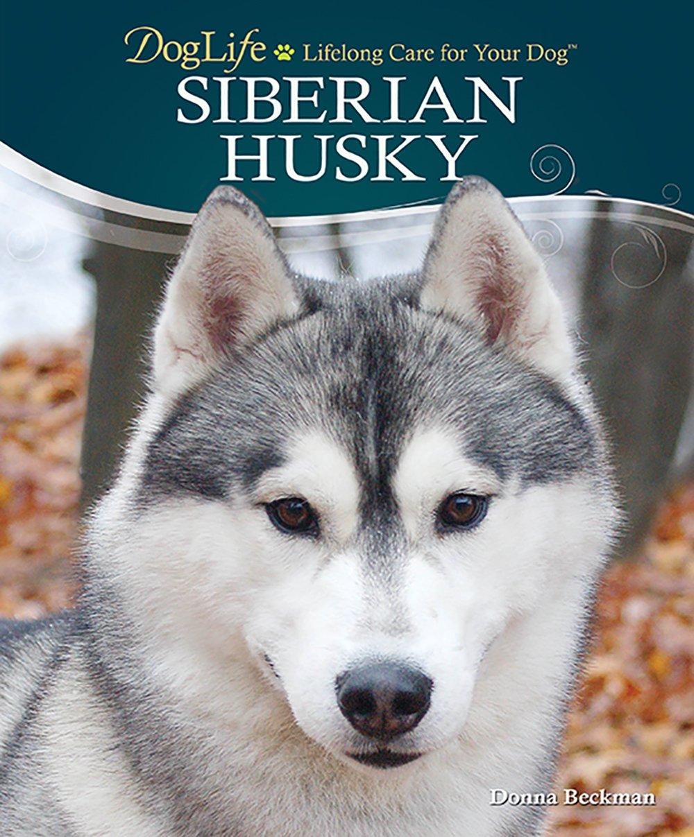 Siberian-Husky-DogLife-Lifelong-Care-for-Your-DogTM