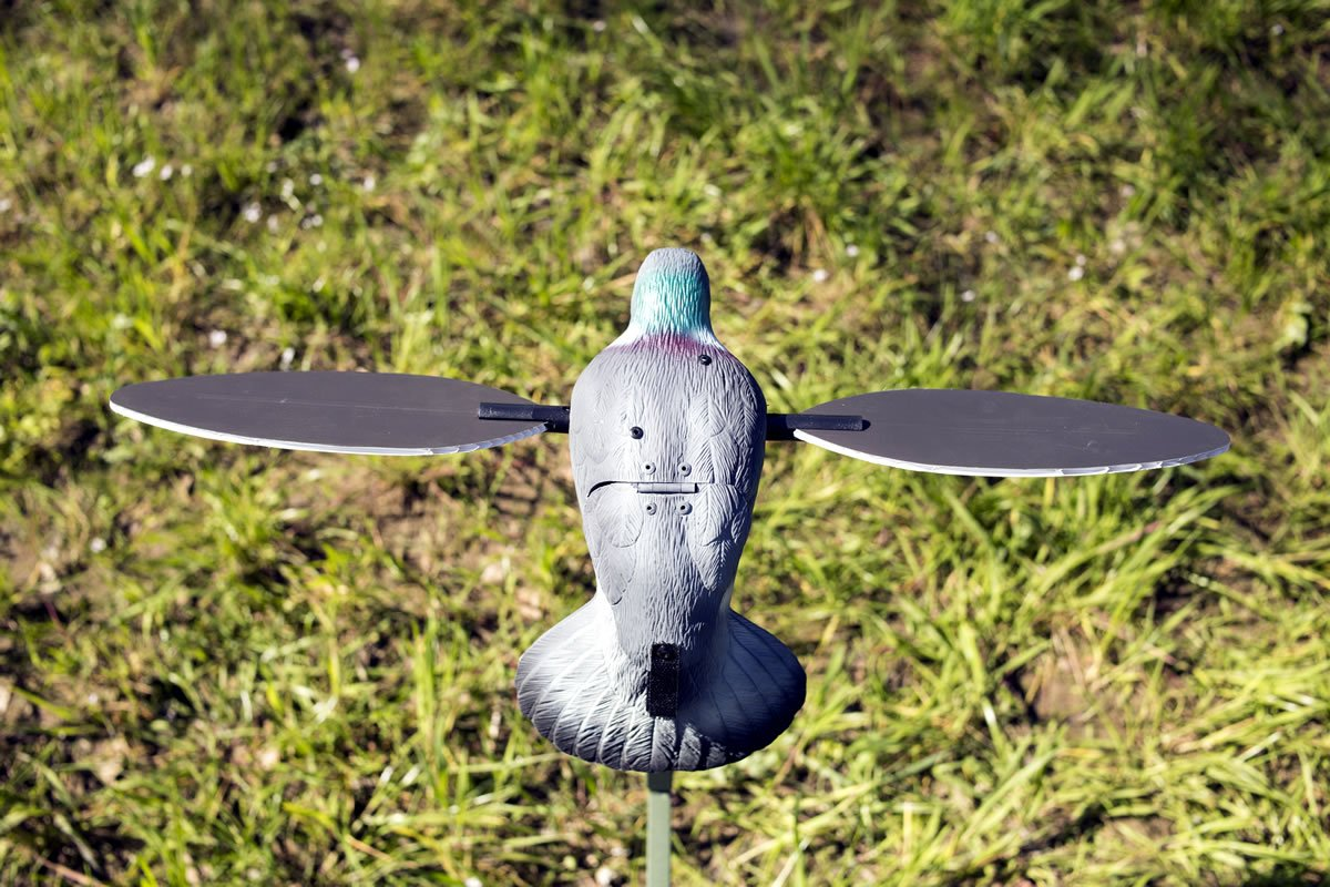 MOJO Outdoors Pigeon Decoy by MOJO Outdoors (Image #4)
