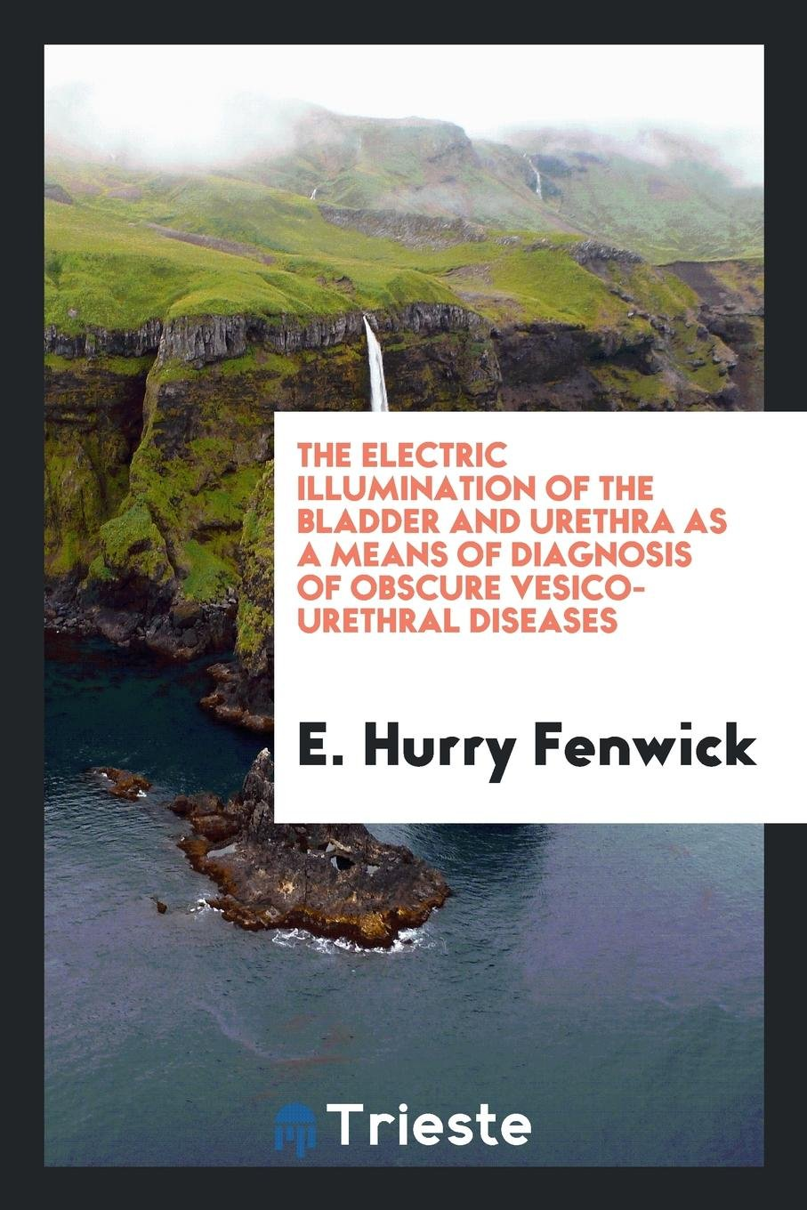 The Electric Illumination of the Bladder and Urethra as a Means of Diagnosis of Obscure Vesico-Urethral Diseases ebook