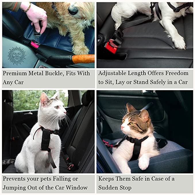 Amazon.com: Cinturones de asiento de coche para perros y ...