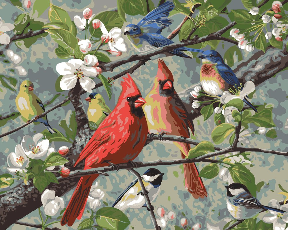 Plaid Enterprises, Inc. 22599 Songbirds Paint by Number Kit, Multicolor by Plaid Enterprises, Inc.