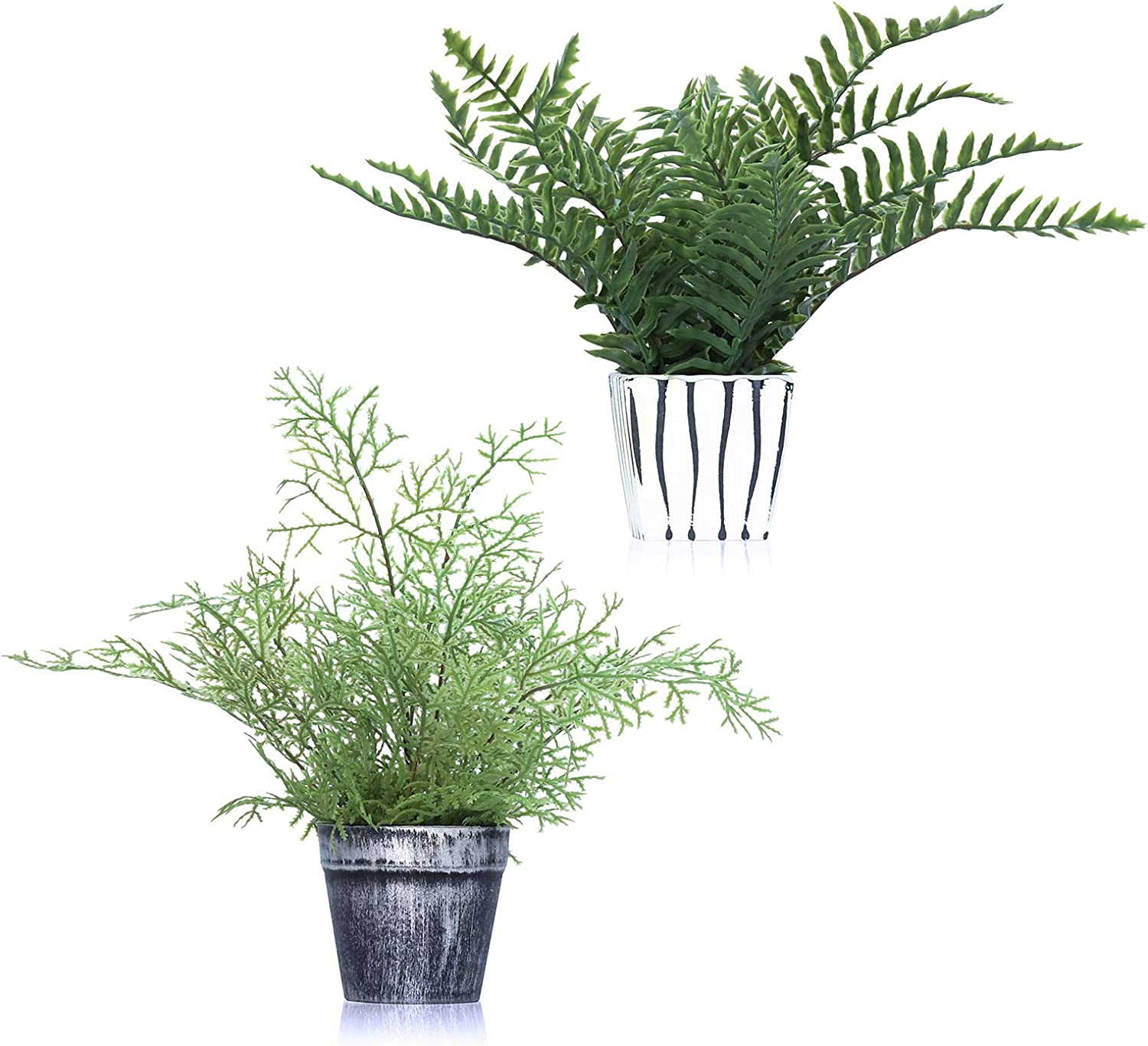 2 Artificial Plants Fern Leaves Grass in Potted Sets Lifelike-Maidenhair Fern and Faux Boston Fern 13-13.5 inches for House Office Garden Indoor Outdoor Greenery Decorations