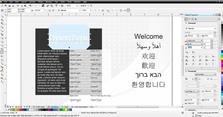 CorelDRAW Graphics Suite X6 Upgrade [Old Version]