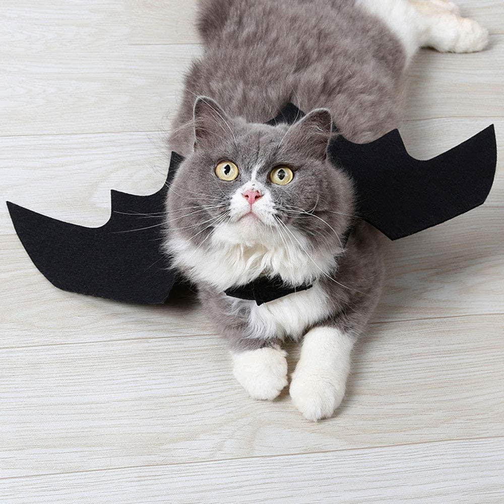 VVVVANKER VANKER Disfraz de Halloween para Mascotas Ropa Negro Traje de Lujo de Halloween Animal Mascota murciélago Vampiro alas Gato Traje de murciélago: Amazon.es: Juguetes y juegos