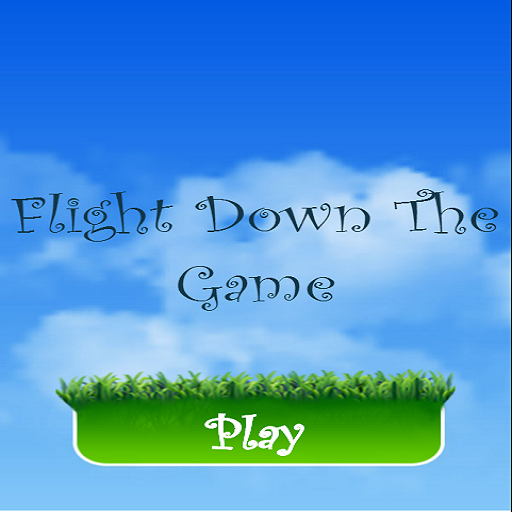 Flight Down The Game