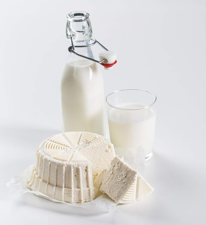 Börner - Cheesemaker, quesera, queso casero, máquina para preparar queso fresco: Amazon.es: Hogar