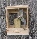Deluxe Combination Squirrel Feeder