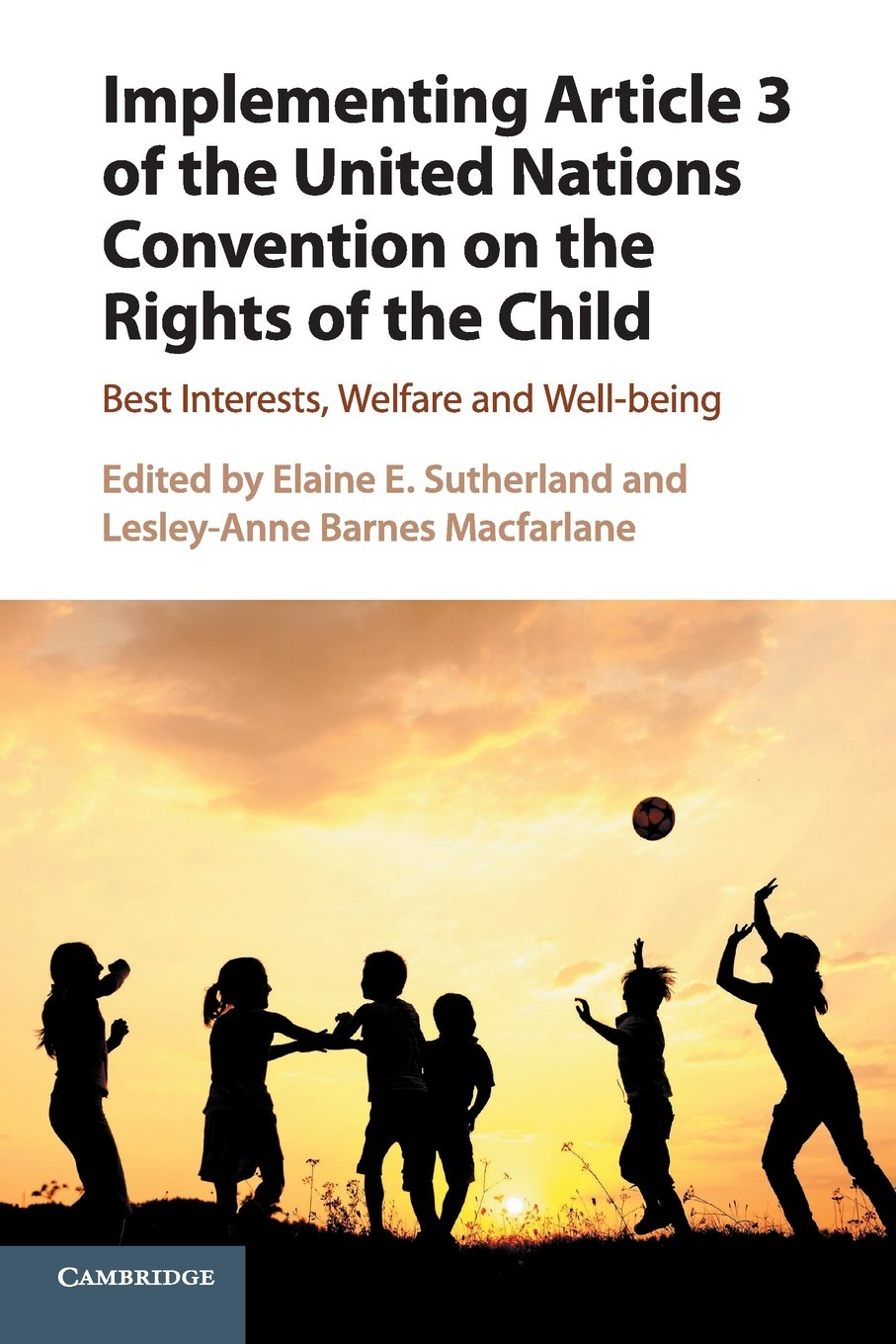 Implementing Article 3 of the United Nations Convention on the Rights of the Child: Best Interests, Welfare and Well-being PDF