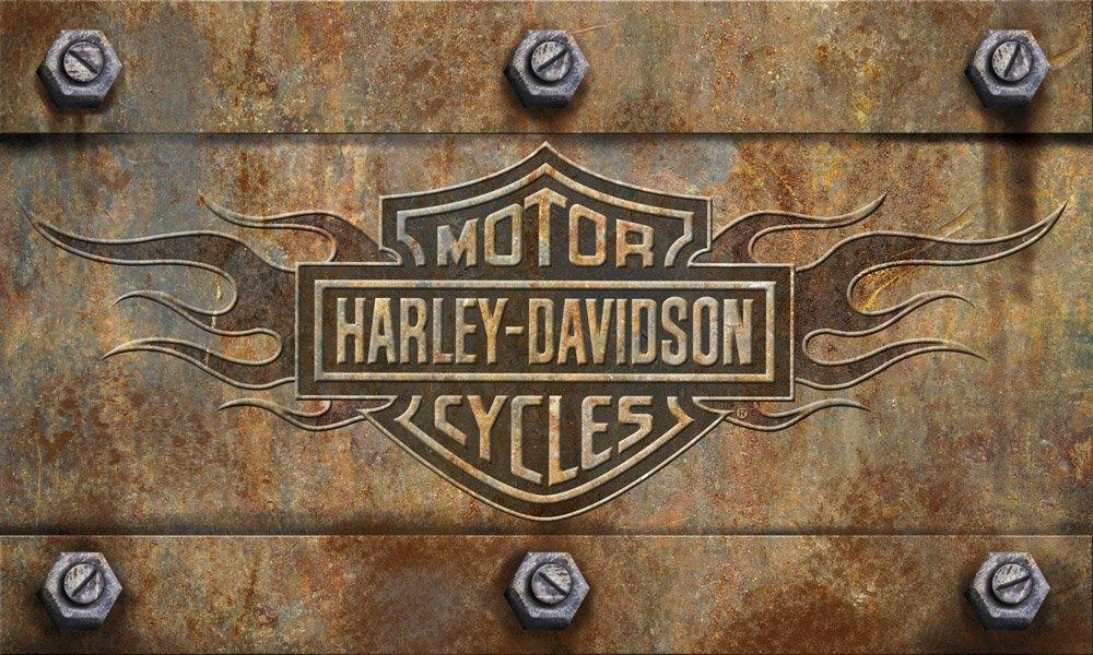 Team Sports America 41EM4901 Emboss Floor Mat, Harley-Davidson Door, Multicolor