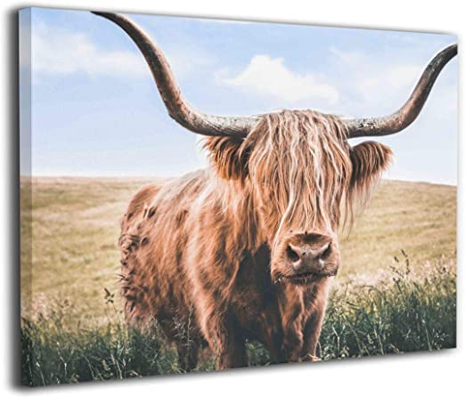 HIGHLAND CATTLE CANVAS PICTURE PRINT WALL ART HOME DECOR LANDSCAPE