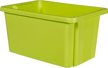 CURVER Essentials 00752-598-00 - Caja de almacenaje para ...