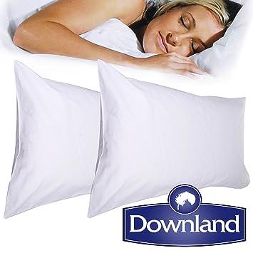 2Pk Downland Goose   Down Pillows Whitesize  Amazon.co.uk  Kitchen   Home 1d5b6fc072