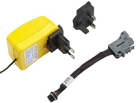 Peg Perego CB0100 - Cargador para Coches eléctricos (24 V ...