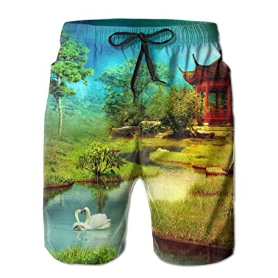 Men's Shorts Swim Beach Trunk Summer Swan Lake Painting Athletic Classic Shorts With Pockets