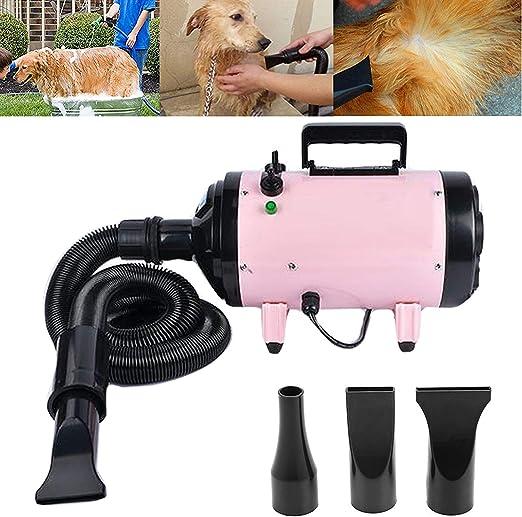 DICN Pet secador de pelo para perros y gatos, pistola de pelo de alta velocidad, potente