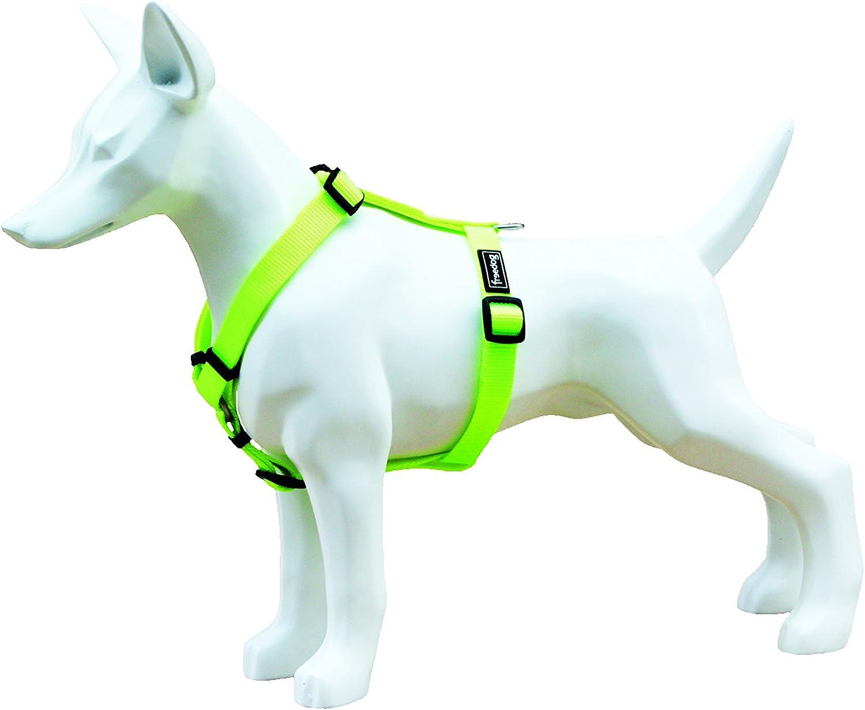 Freedog FD4002037 - Arnés Nylon neón, para Perro, Verde flúor ...