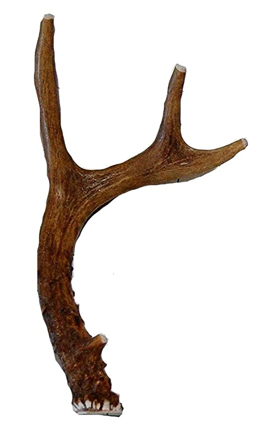 Big Dog Antler Chews Small Whole Deer Antler Dog Chew, for Small to Medium  Size Dogs and Puppies - 7 to 11 Inches Long Brand