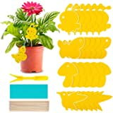 24 Pack Sticky Fruit Fly Traps Indoor Gnat Trap, Fungus Fly Trap and Yellow Sticky Traps Fruit Fly Killer, Fungus Gnat Killer