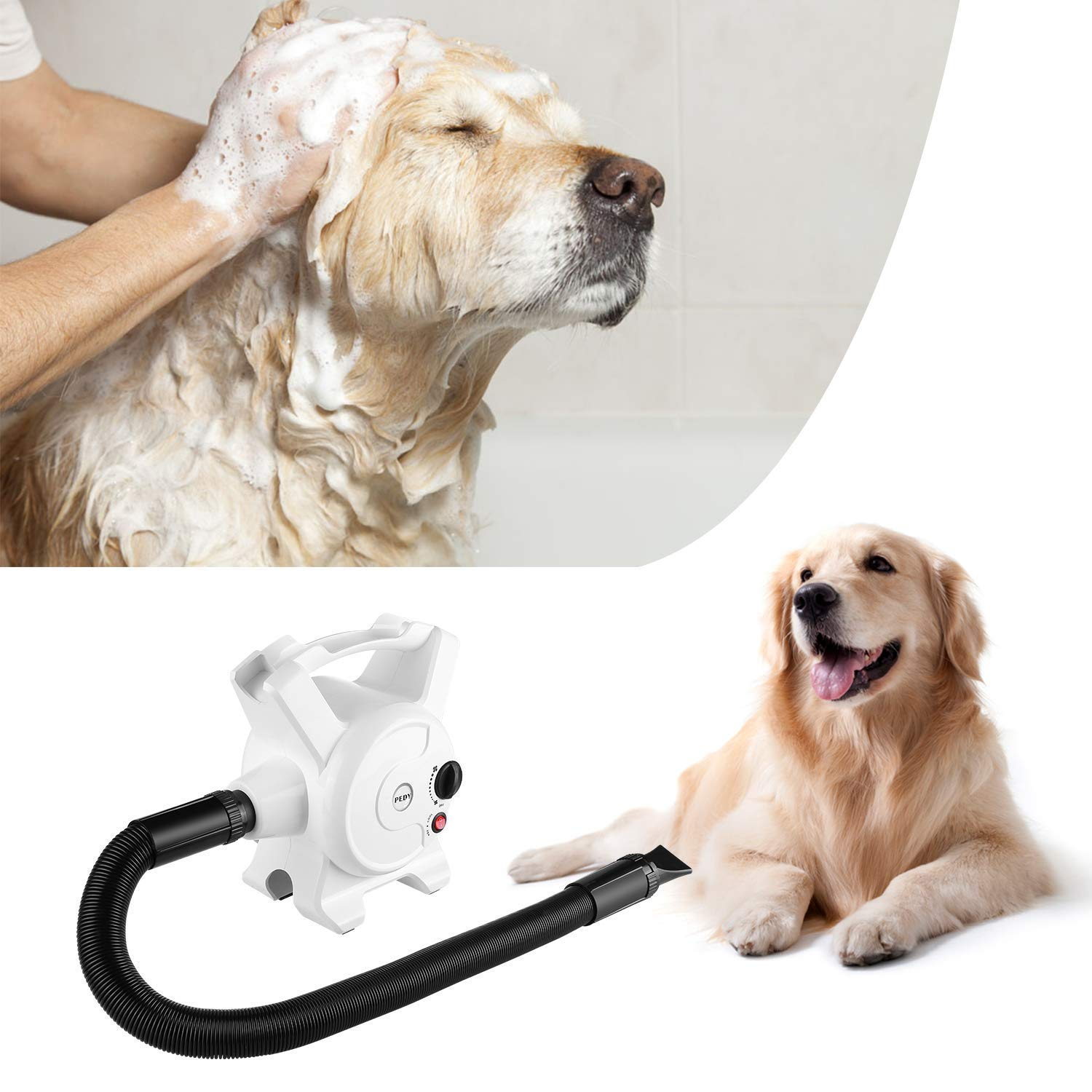 Pedy Dog Hair Dryer 3.2 HP Stepless Adjustable Speed Blow Dryers for Dogs Grooming with Heater 2400W Pet Dryer with 3 Different Nozzles by Pedy (Image #8)