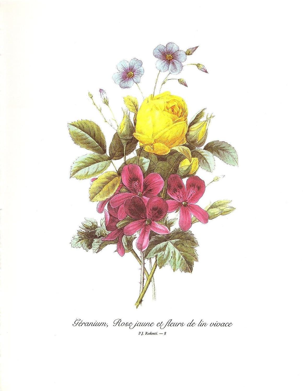 Amazon 1991 Vintage Redoute Bouquet 8 Geranium Yellow Rose