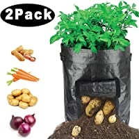 igingko 3-Pack Potato Grow Bags Green 3 Gallon Drain Hole /& Large Harvest Window Sturdy PE Planting Pots Garden Containers Planters for Vegetables with Handles