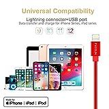 [Apple MFi Certified] Metal USB Lightning