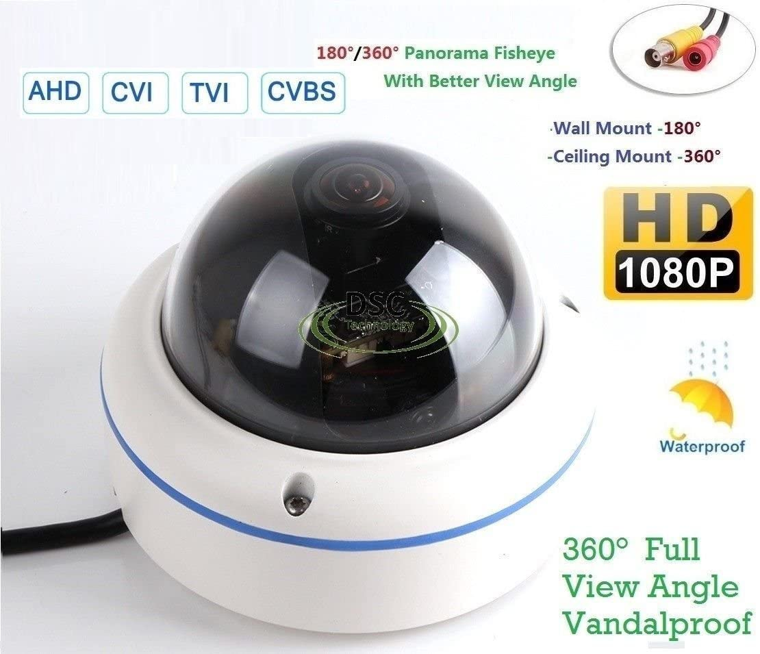 """180/360˚ Panorama View Angle 700TVL 1/3"""" Super HAD II CCD Double Scan Indoor/Outdoor Dome Security Camera, Advanced DSP to Offer High Image Quality"""