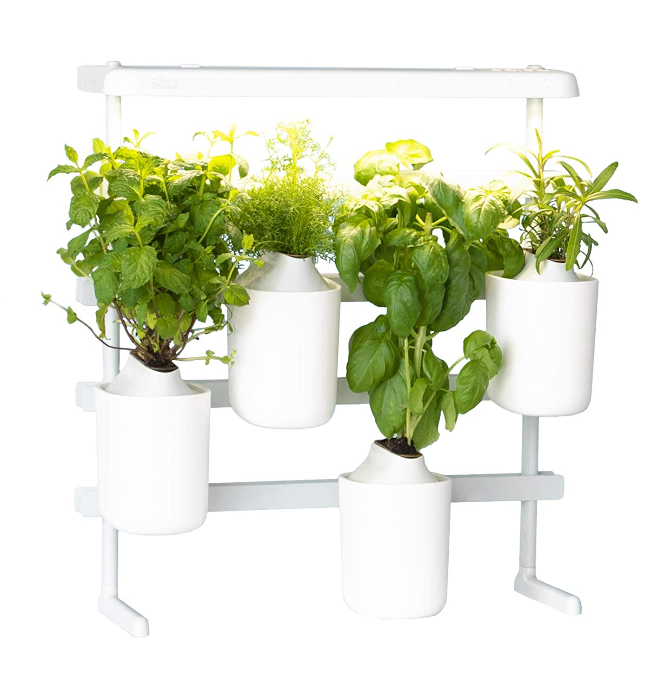 Prêt à Pousser Modulo Your Versatile Indoor Garden Grow
