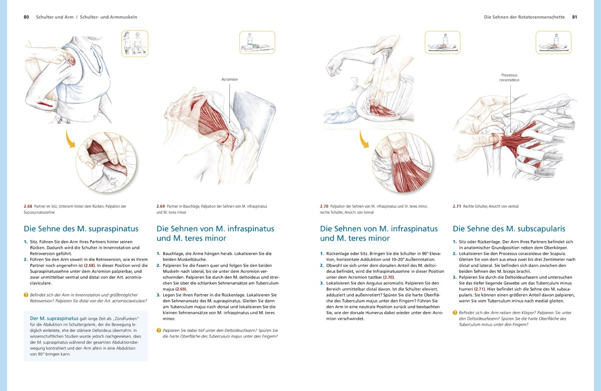 Trail Guide Anatomie: Anatomie praktisch begreifen: Amazon.de ...