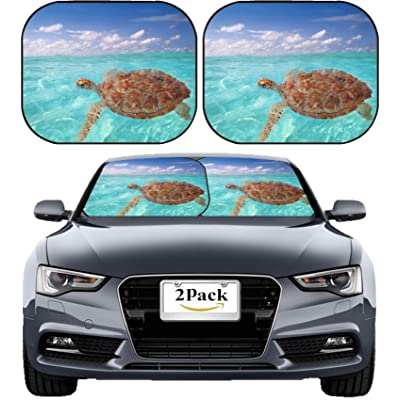 MSD Car Sun Shade Windshield Sunshade Universal Fit 2 Pack, Block Sun Glare, UV and Heat, Protect Car Interior, Image ID: 9226943 Green Chelonia mydas Caribbean sea Cheloniidae Water Surface: Automotive