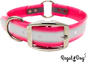 Regal Dog Products - Reflective Dog Collar with Heavy Duty Center Ring. Puppy Collar Harness for Dogs