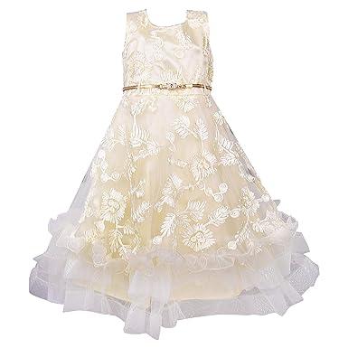 86c8bb1c17cba Wish Karo Girls Party Wear Long Frock Dress - Net - (LF150): Amazon ...
