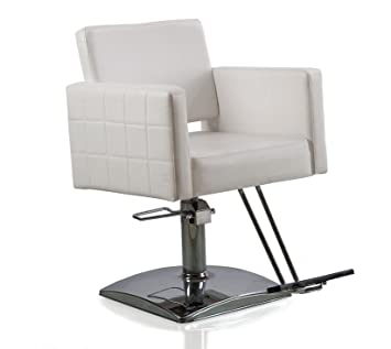 Amazon.com: flagbeauty Blanco hidráulico Styling silla de ...