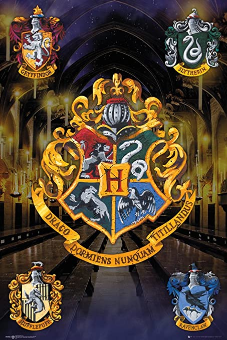Porte Carte GB Eye LTD,Harry Potter Gryffindor