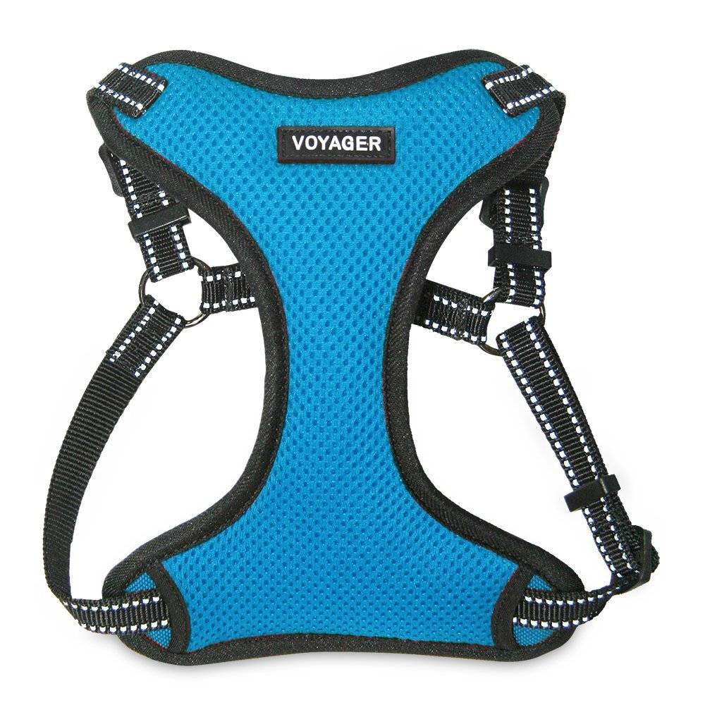 Best Pet Supplies Voyager - Fully Adjustable Step-In Mesh Harness with Reflective 3M Piping (Turquoise, Large)