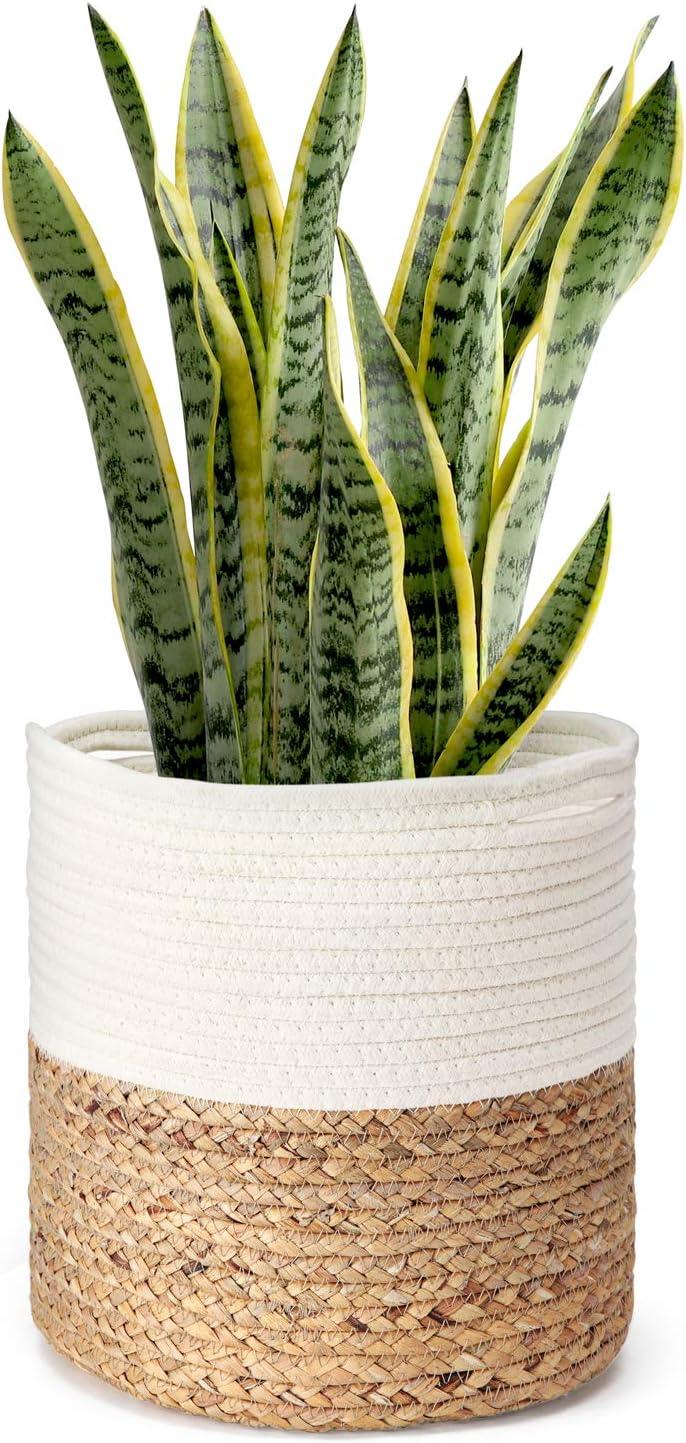 Kiondo basket cactus planter small shelf basket miniature planter succulent planter desk planter sisal basket small woven basket set