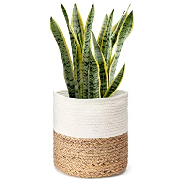 Mkono Cotton Rope Plant Basket with Water Hyacinth Modern Indoor Planter Up to 10 Inch Pot Woven Storage Organizer with Handles Home Decor, 11  x 11