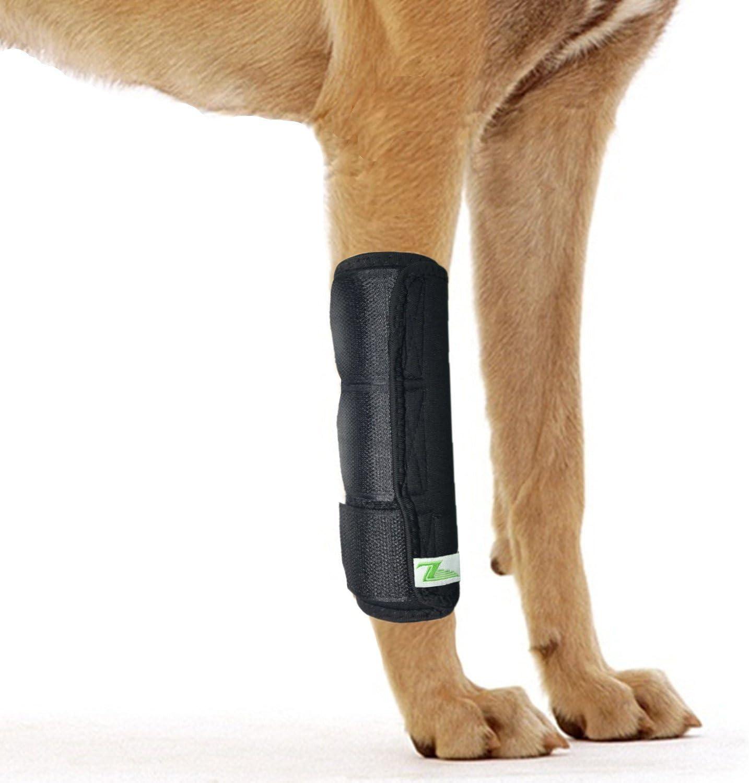 RockPet Órtesis Curadora Articulación Pata Delantera de Perro Envoltura Canina de Corvejón (L/XL)