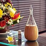 Raindrop 2.0 Nebulizing Essential Oil Diffuser