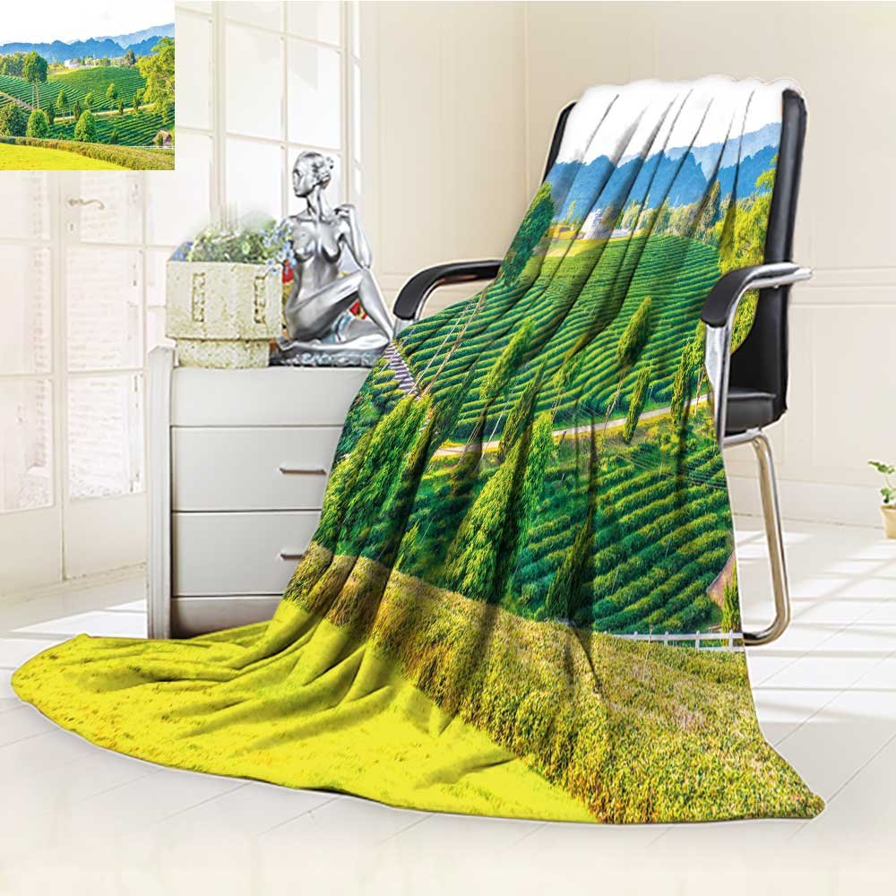 Decorative Throw Blanket Ultra-Plush Comfort landscape view of tea farm in thai thailand Soft, Colorful, Oversized | Home, Couch, Outdoor, Travel Use(60''x 50'') by Homesonne