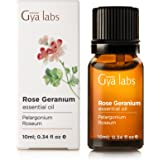 Rose Geranium (Africa) - 100% Pure, Undiluted, Organic, Natural & Therapeutic Grade Essential oil For Aromatherapy Diffuser, Health Skin and Relaxtion - 10ml - Gya Labs