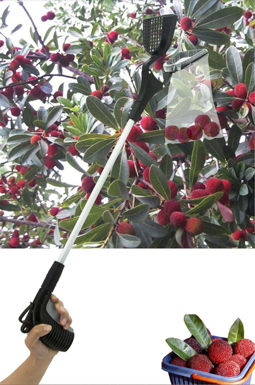 Long 80Cm,1Pcs Dbtxwd Recogedor De Fruta Handheld Grabber Tool para Apple Orange Plum Pear Peach