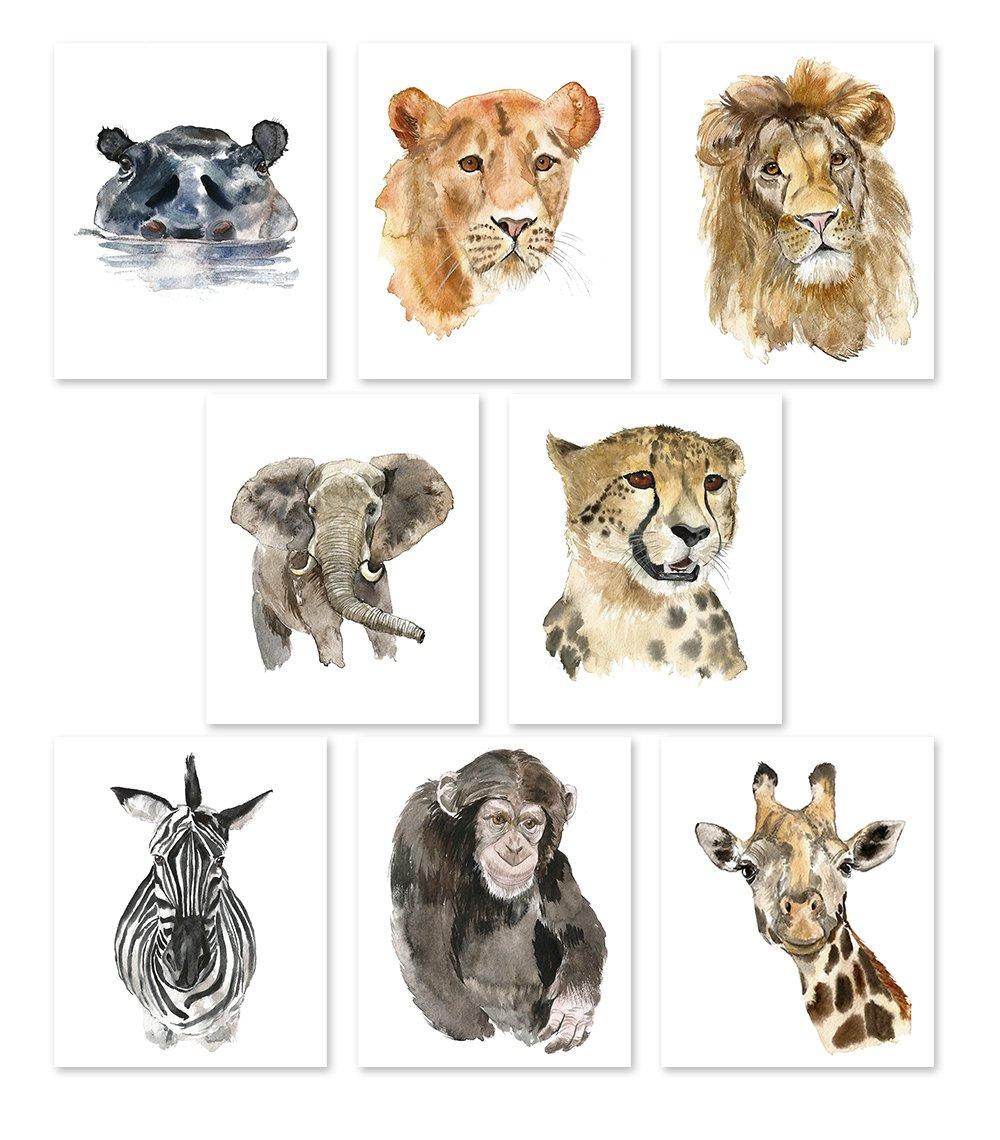 Nursery Wall Art Decor - Set of 8 Animal Art Prints Posters//Safari Watercolor Theme//Baby Room//Elephant Lion Zebra Giraffe Hippo Lioness Leopard Monkey (8x10) by AntonyPrint
